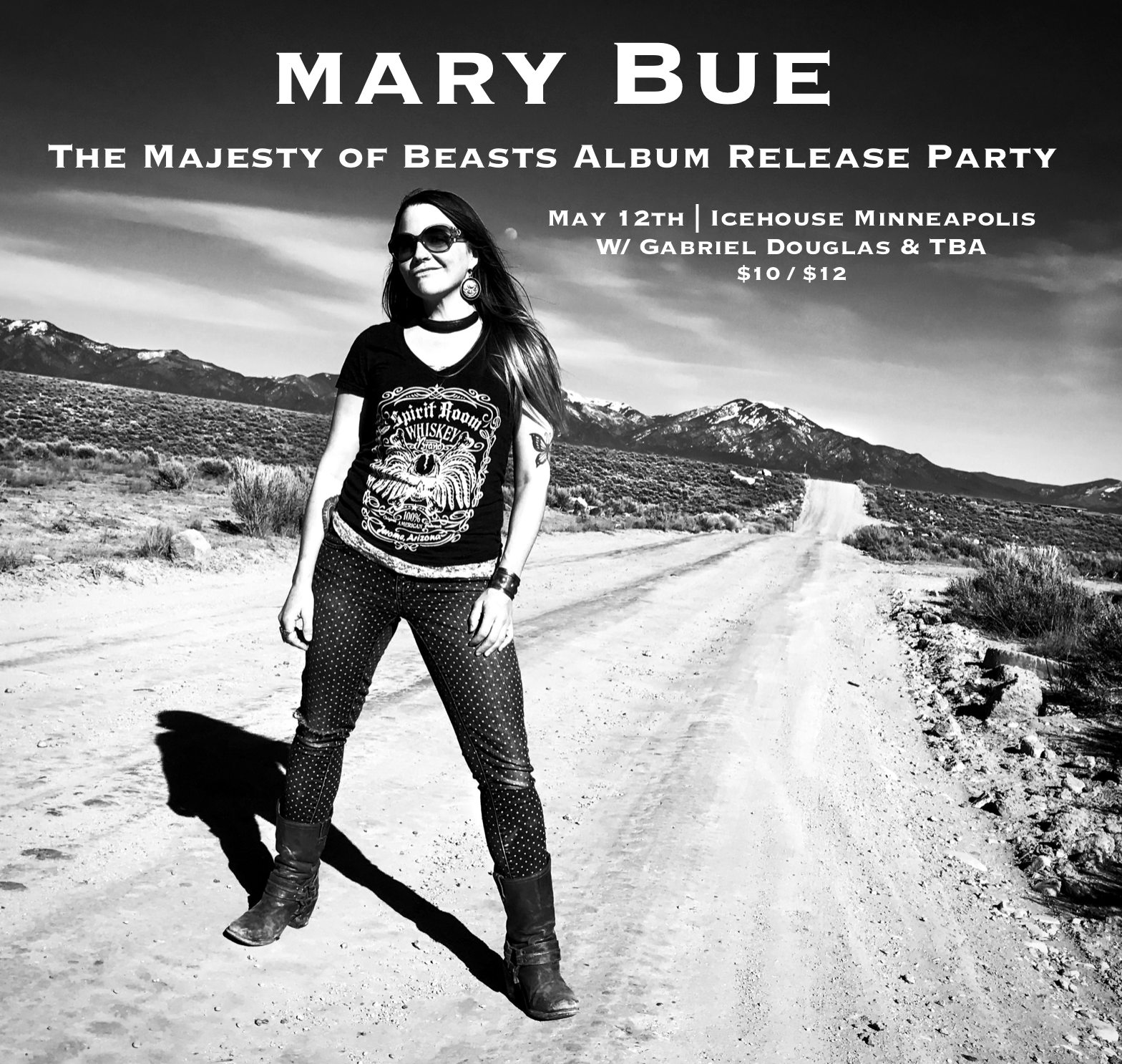 Mary Bue Music Minneapolis Album Release Party