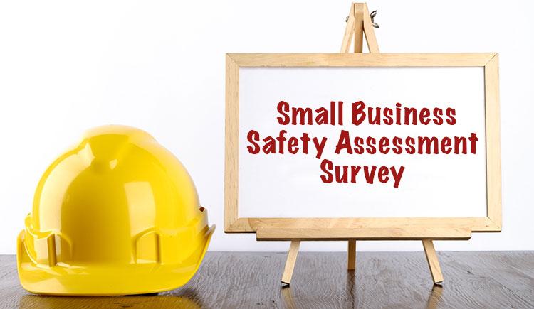 Important Safety Assessment Survey