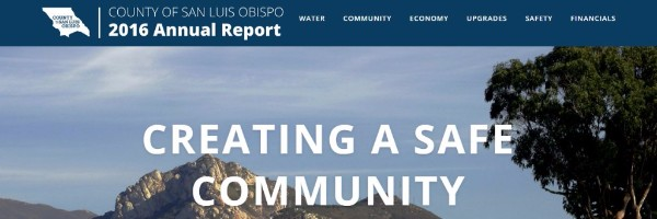 screen shot of County annual report website