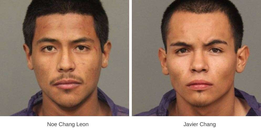 Gang members convicted on felony charges