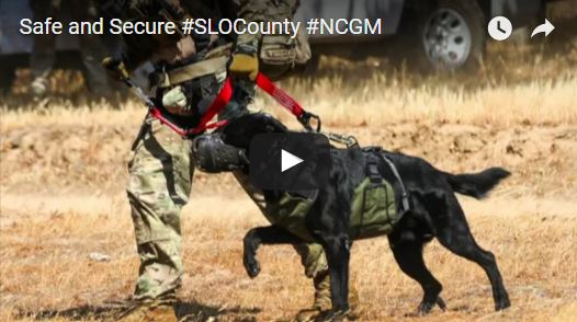 Safe and Secure Counties Video