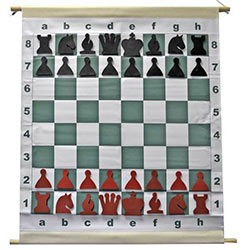 Magnetic Demo Chess Set