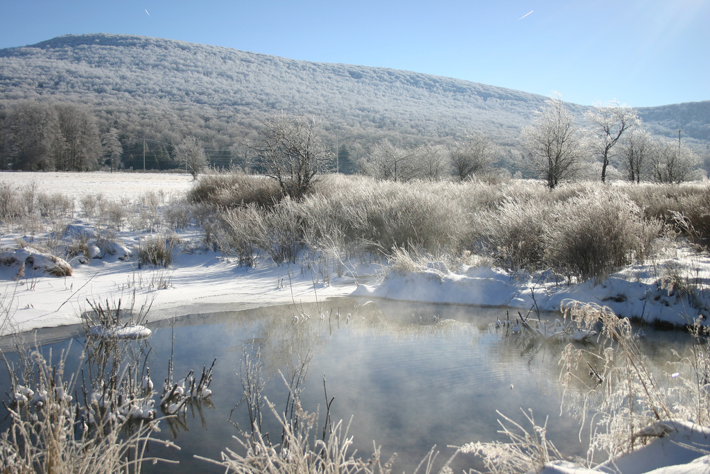 Pond in winter at Canaan Valley National Wildlife Refuge, West Virginia. Photo: USFWS