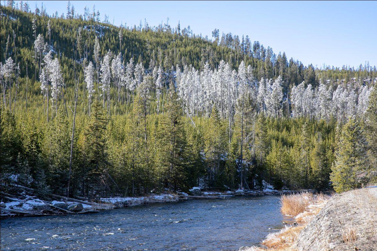 Firehole River at Yellowstone National Park. Photo: Diane Renkin/NPS, November 2019