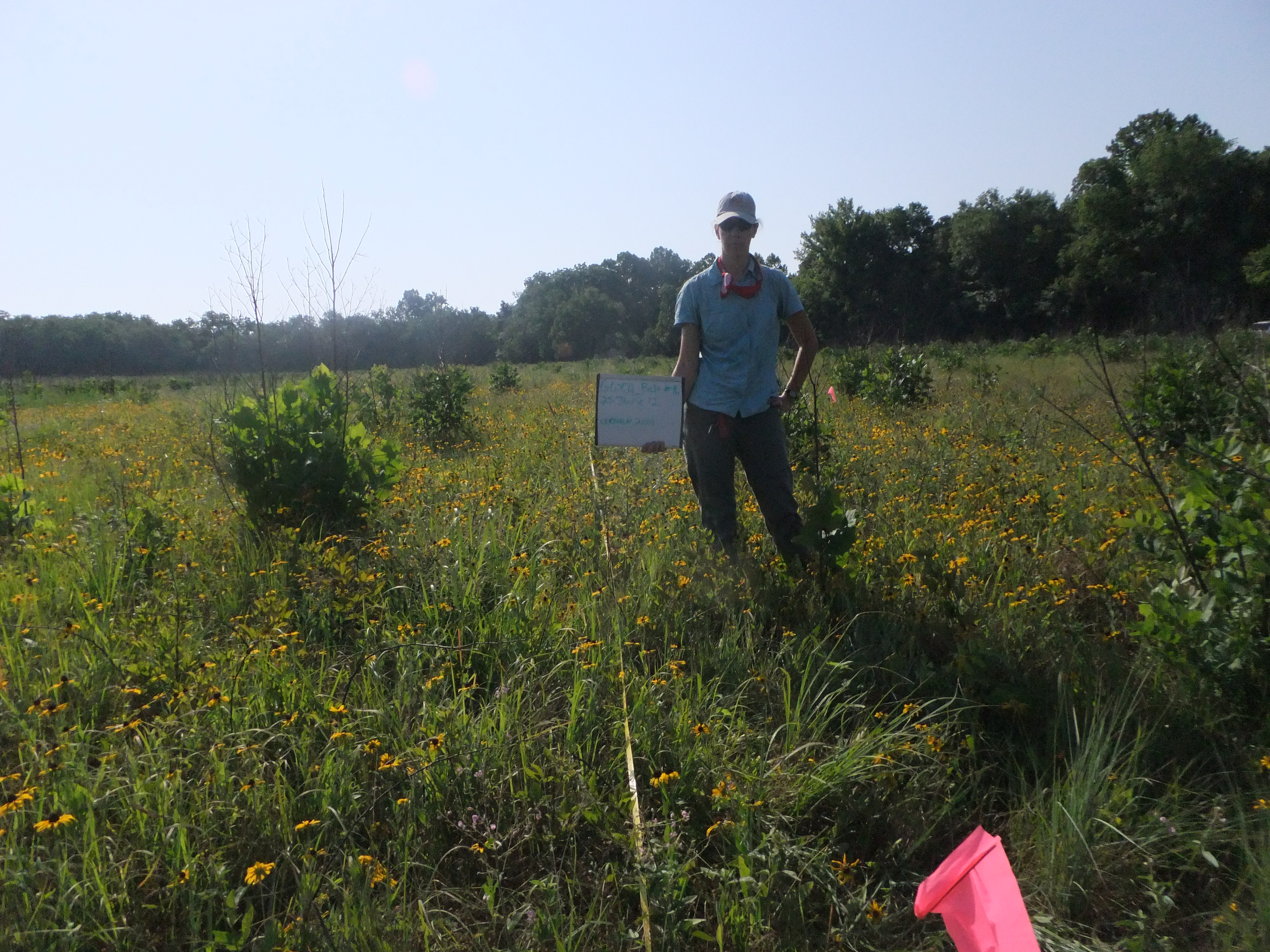 Sherry Leis poses for a photopoint shot while monitoring vegetation in the prairie at George Washington Carver National Monument.