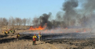 Prescribed fire at Chickasaw Recreation Area