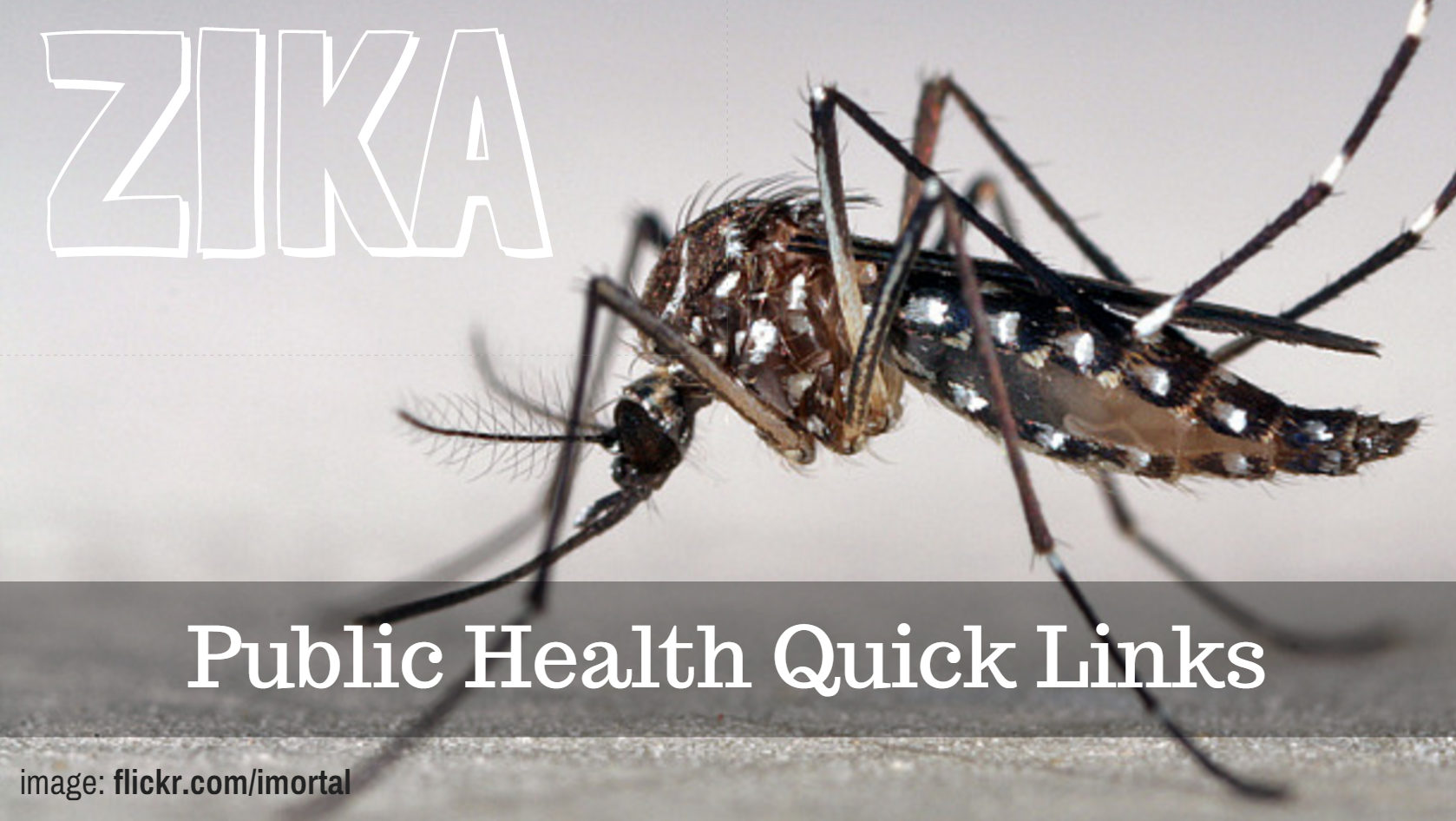 ZIKA VIRUS: Quick Links for Public Health