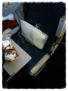 Airplane aisle seat armrest up