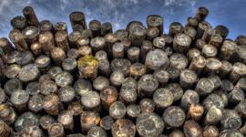 Taller timber code change