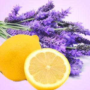 Lemon lavender scented soy candle