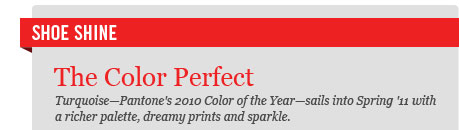 Shoe Shine: The Color Perfect