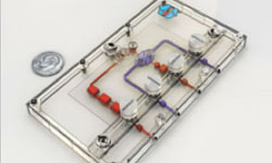 Nortis' microfluidic chip, a disposable device made of silicone and encased in a polycarbonate shell