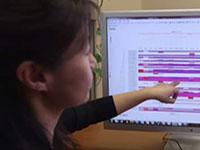 An NCATS researcher analyzes data from a high-throughput drug screen.