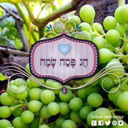 Happy Purim Jewish Girls Party by zebratoys