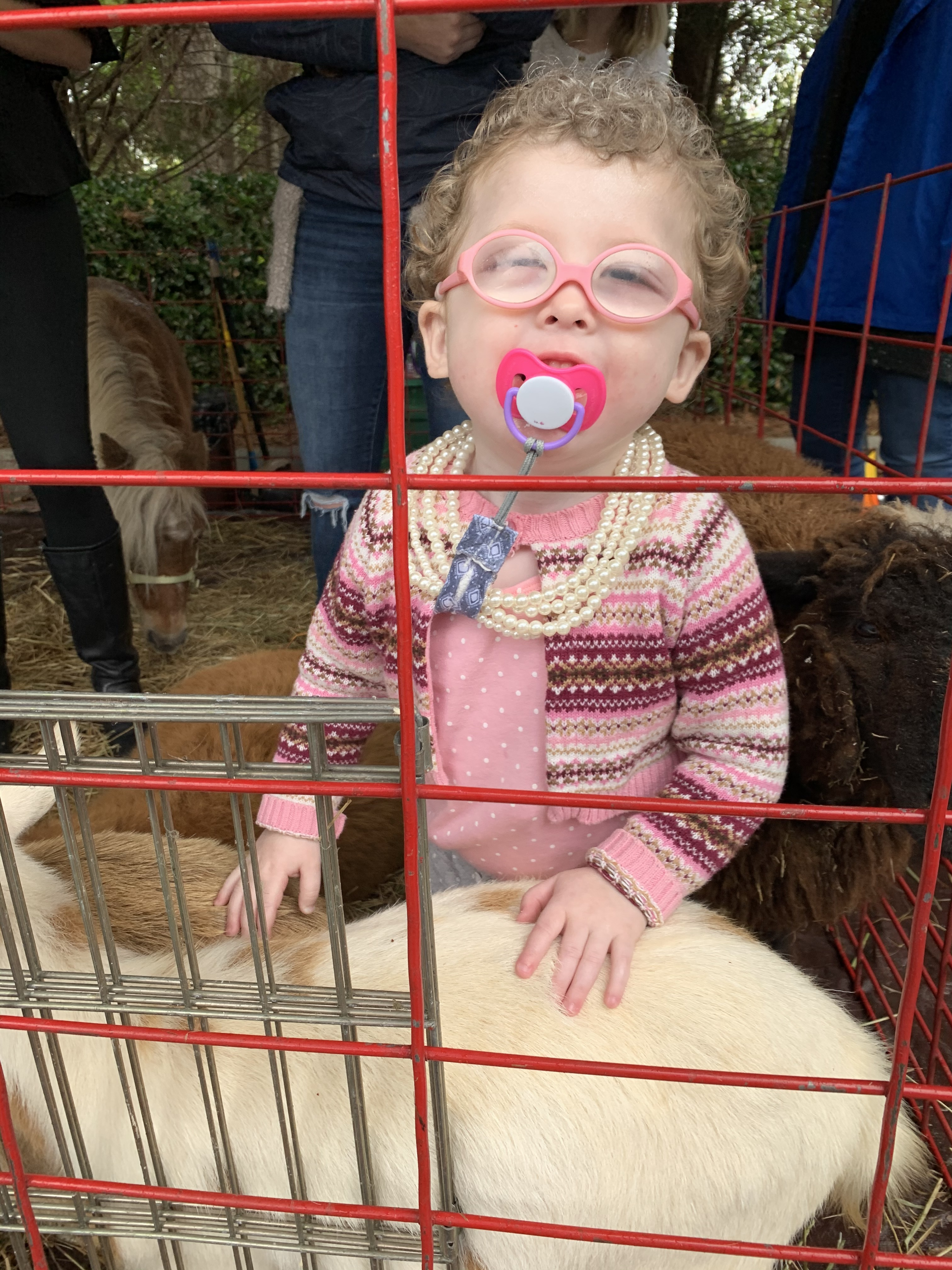 Phoebe looks fetching in a pink sweater accessorized by matching glasses and pacifier.  A string or pearls complete her outfit.  Phoebe is smiling and petting a goat in the petting zoo.