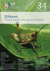 ZEFnews cover