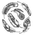 CSBG Tribal T&TA