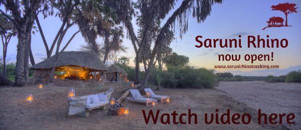 Black Rhino Tracking in Kenya with Saruni