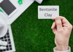 The powerful versatility of Humistore's bentonite clay