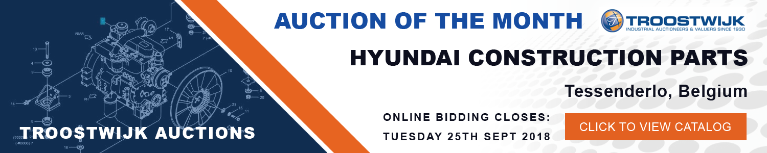 Auction of the Month