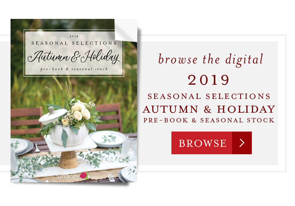 Browse the digital 2019 Seasonal Selections Autumn & Holiday Pre-book and Seasonal Stock