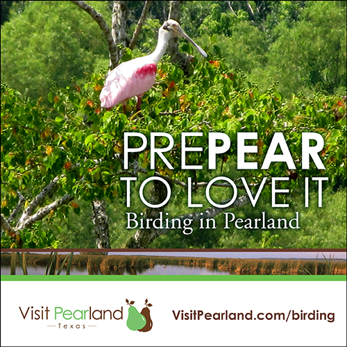 Visit Pearland Texas