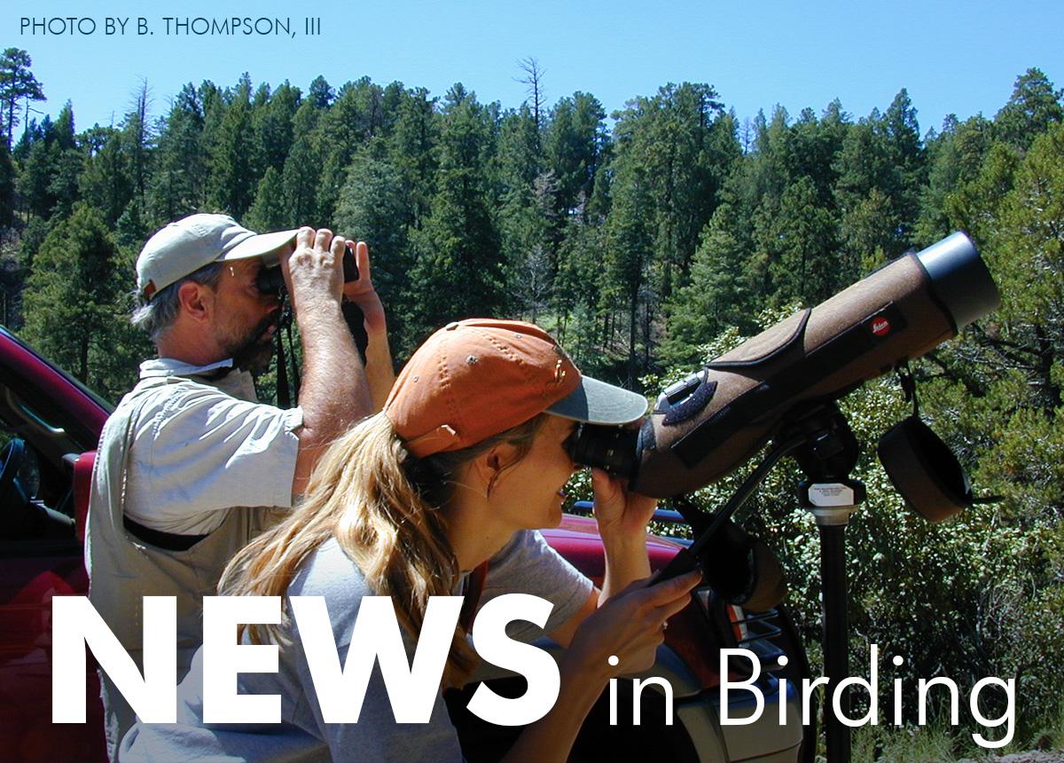 News in Birding. August 2019