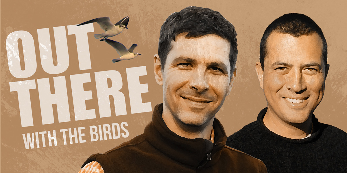 Out There with the Birds #50: The Wild World of Bird Behavior