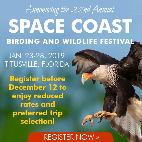Space Coast Birding and Wildlife Festival