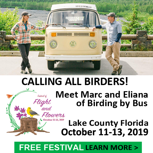 Calling all birders! Meet Marc and Eliana of Birding by Bus!