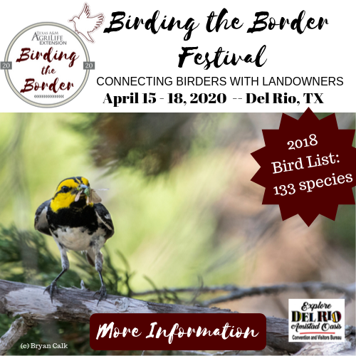 Birding the Border Festival: Connecting Birders with Landowners, Apr. 15-18, 2020.