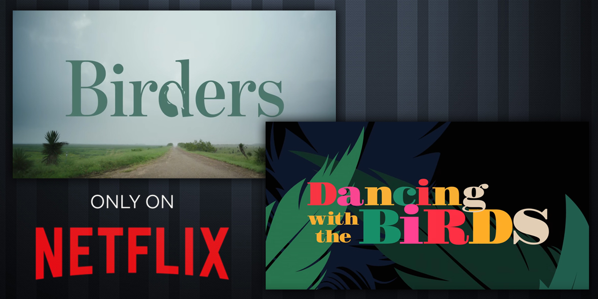 Must-see TV for Birders (and Non-birders!)