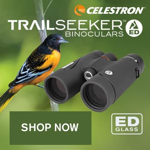 Celestron Trailseeker ED Binoculars. Shop now!