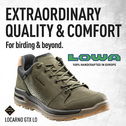 Lowa Boots: Extraordinary Quality and Comfort