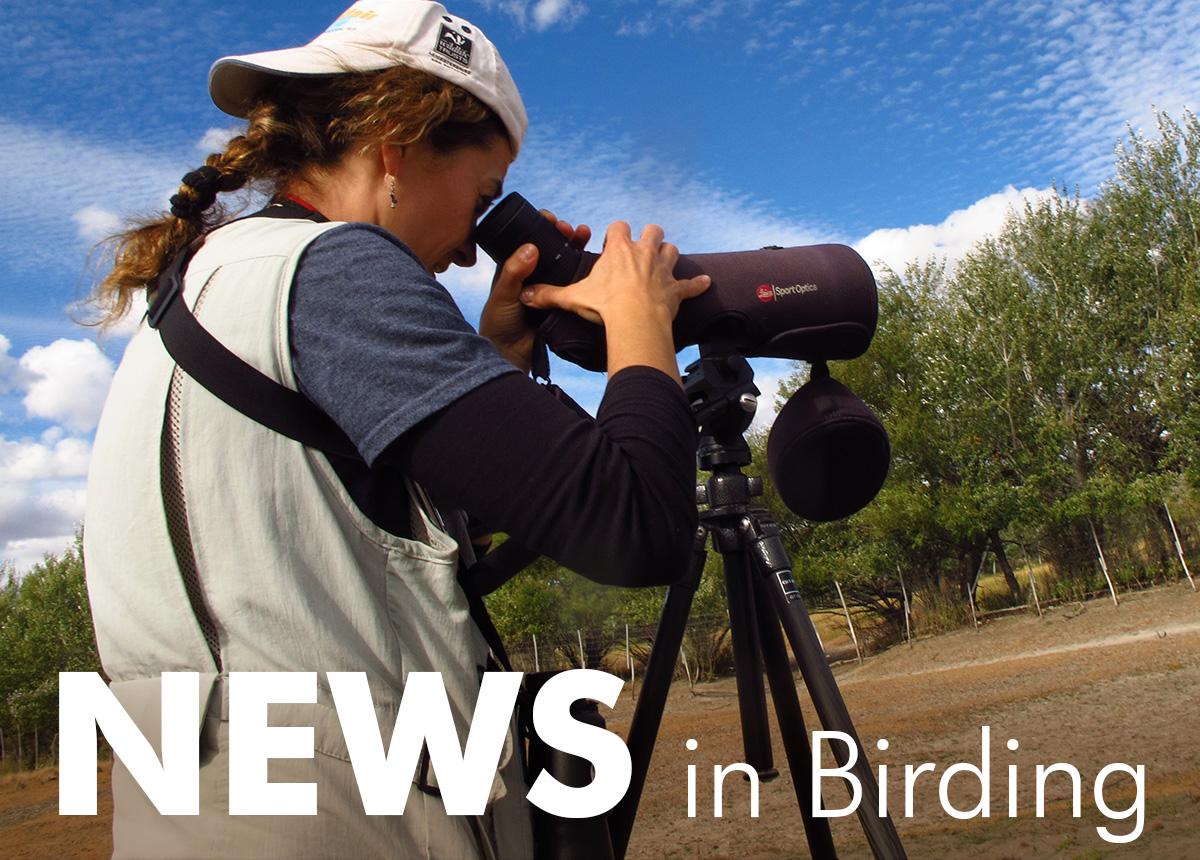 News in Birding: September 2018
