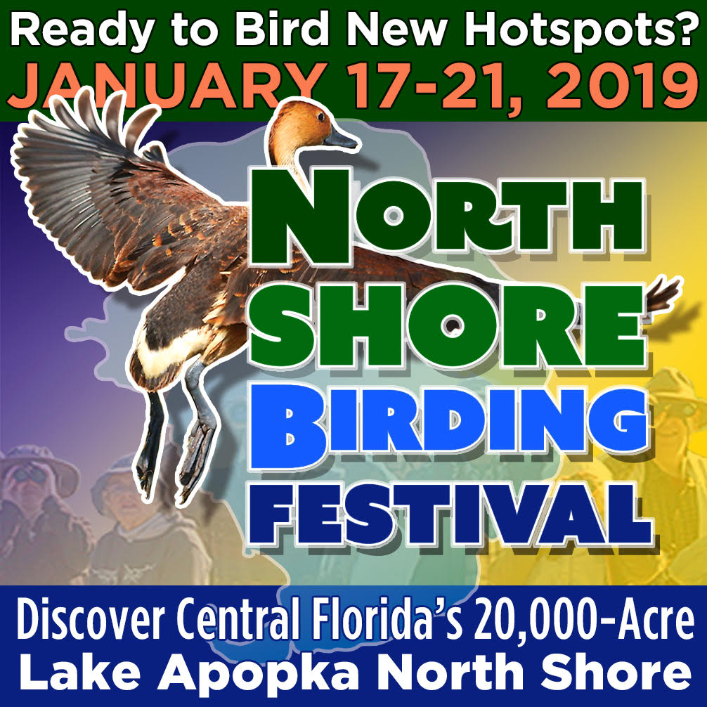 North Shore Birding Festival