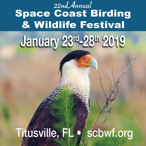 Space Coast Birding & Wildlife Festival