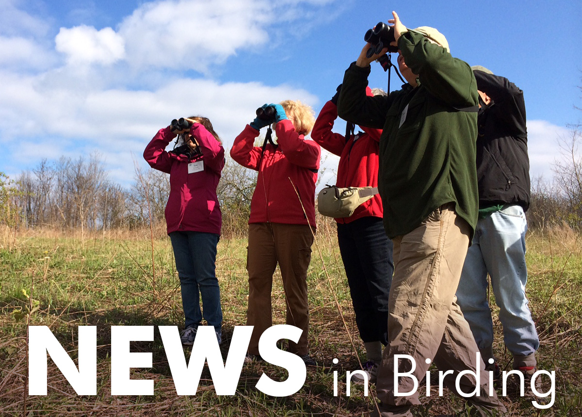 News in Birding, Both Grim and Good!
