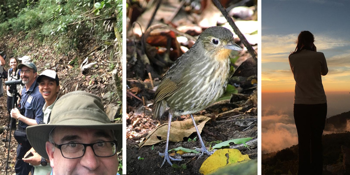 This Birding Life #81: Birding Columbia, Part I