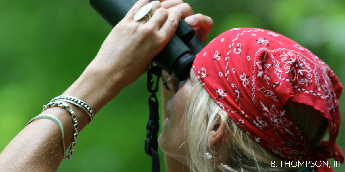 Get Ready for the World Series of Birding
