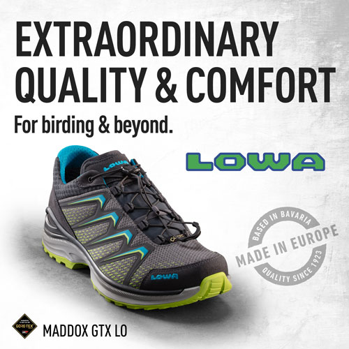 Extraordinary Quality and Comfort for Birding and Beyond: Lowa Boots.