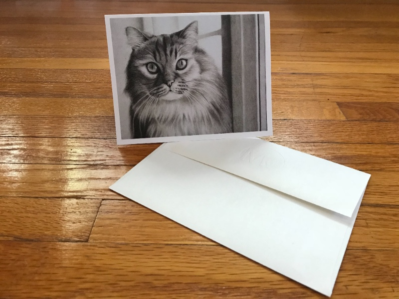Mercedes Victoria Greeting Cards $5