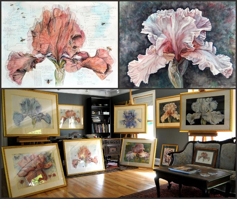 Oversized Iris Watercolor Series