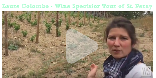 Wine Spectator Tour of St. Peray