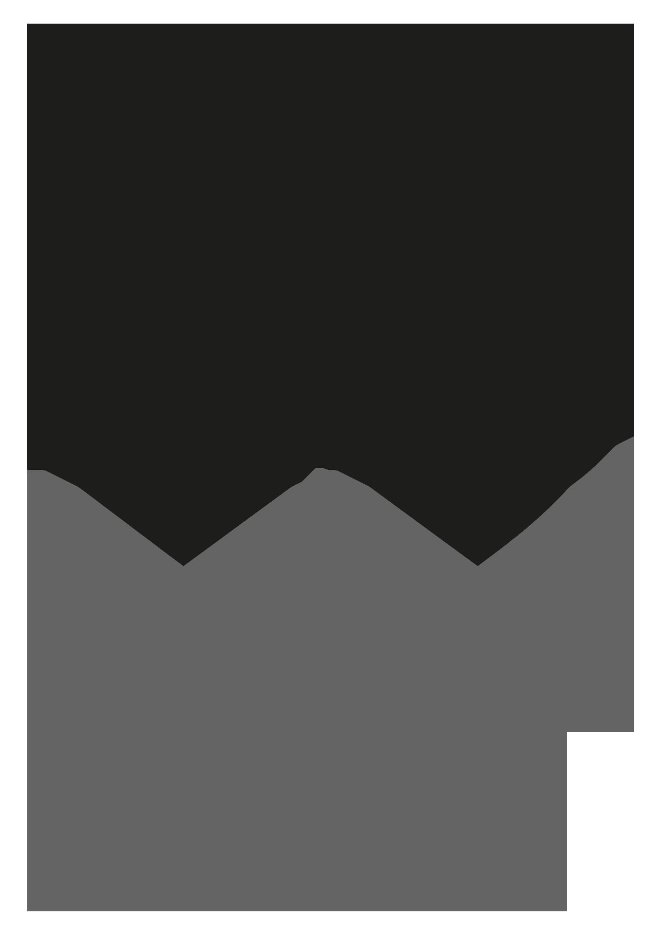LBWomen Logo