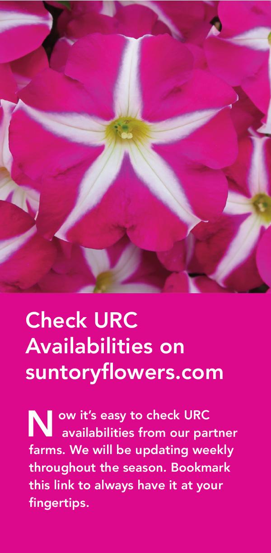 URC Availabilities