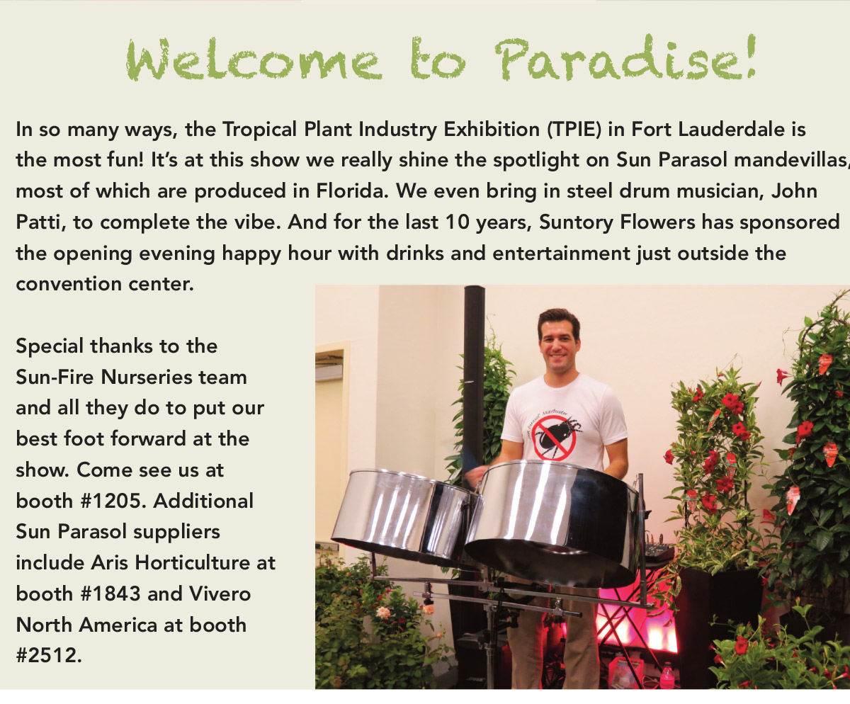 In so many ways, the Tropical Plant Industry Exhibition (TPIE) in Fort Lauderdale is the most fun! It's at this show we really shine the spotlight on Sun Parasol mandevillas, most of which are produced in Florida. We even bring in steel drum musician, John Patti, to complete the vibe.
