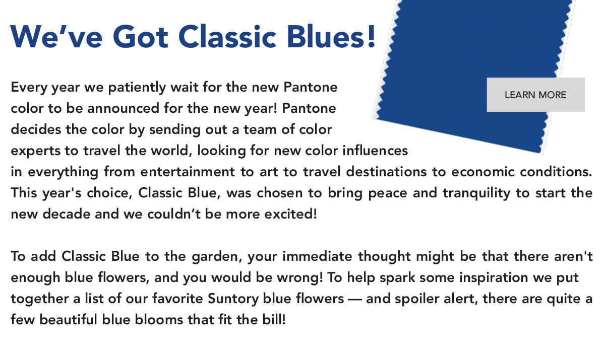 We've got classic blues!Every year we patiently wait for the new Pantone color to be announced for the New Year!