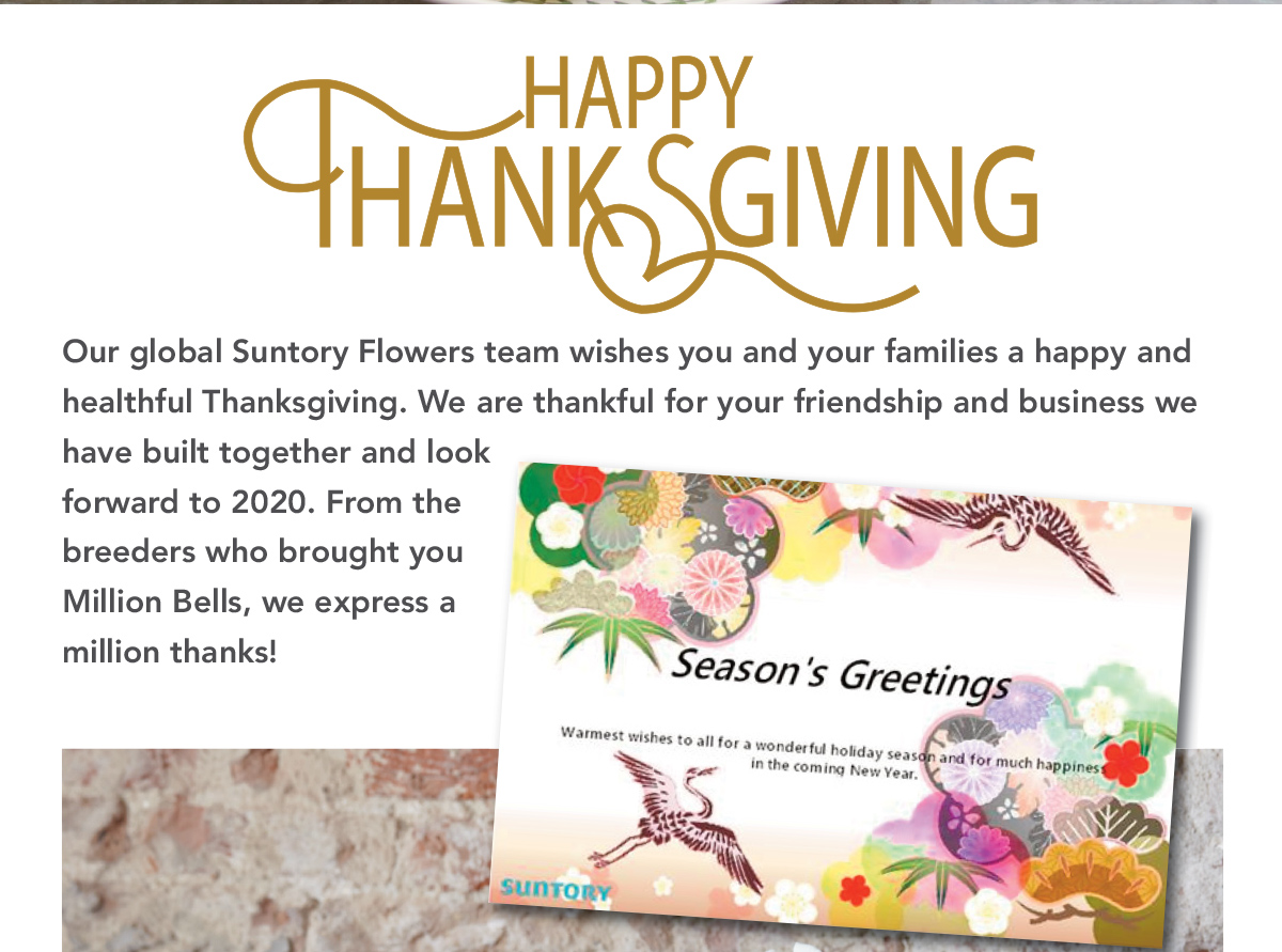 Happy Thanksgiving! Our global Suntory Flowers team wishes you and your families a happy and healthful Thanksgiving. We are thankful for your friendship and business we have built together and look forward to 2020. From the breeders who brought you Million Bells, we express a million thanks!