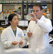 Research technician Lifang Li and scientist Dr. Jeff Dilworth decipher the secrets of stem cells at the Sprott Centre for Stem Cell Research, Ottawa Hospital Research Institute (OHRI). Photo by the OHRI.